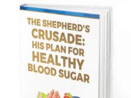 The Shepherd's Crusade