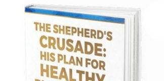 The Shepherd's Crusade